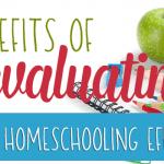 Benefits of Evaluating Your Homeschooling Efforts