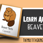 Beaver Facts Color and Copywork