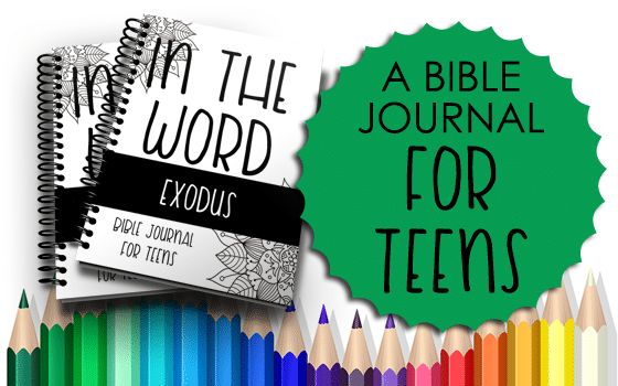 Bible Journal for Teens Exodus