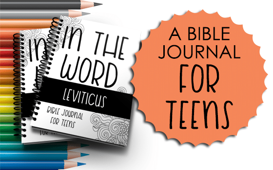 Bible Journal for Teens Leviticus