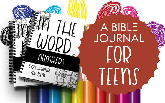 Bible Journal for Teens: Numbers
