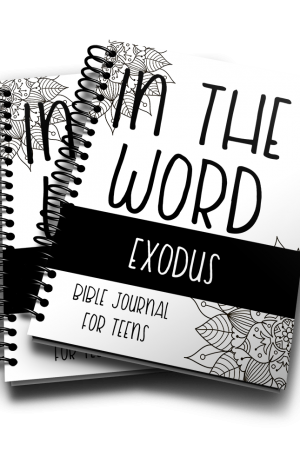 In The Word Bible Journal Exodus