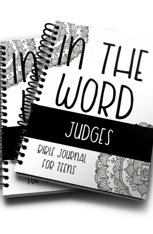 In The Word Bible Journal Judges
