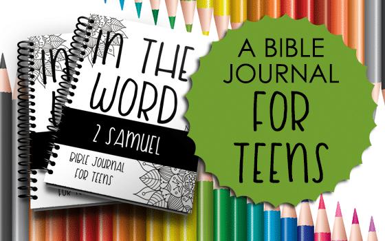 Bible Journal for Teens: 2 Samuel