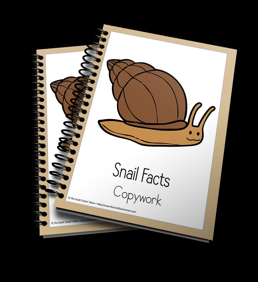 Snail Color and Copywork