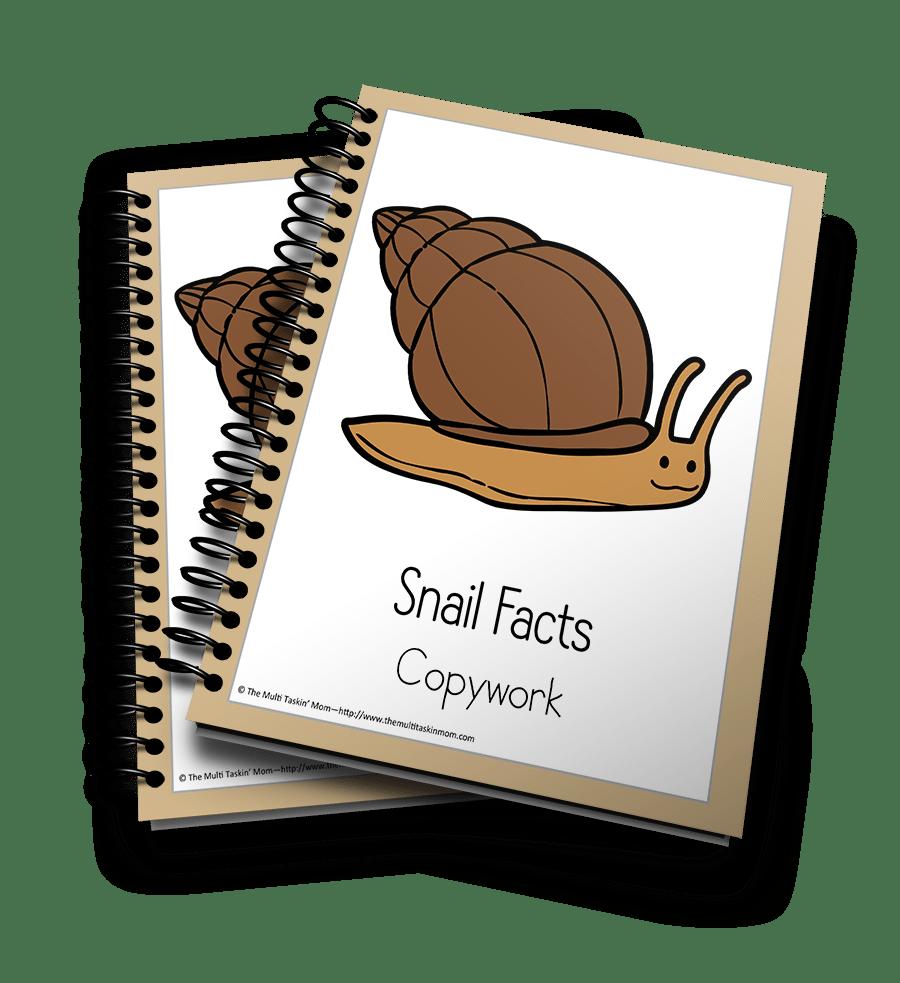 Snail Copywork 3D