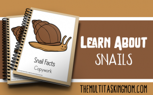 snail facts color and copywork