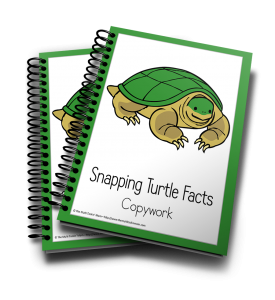 This Snapping Turtle Copywork Pack is perfect for your little learners.