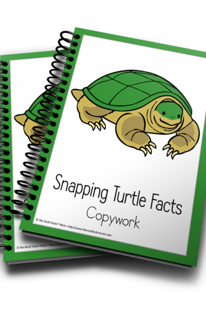 Snapping Turtle Color and Copywork