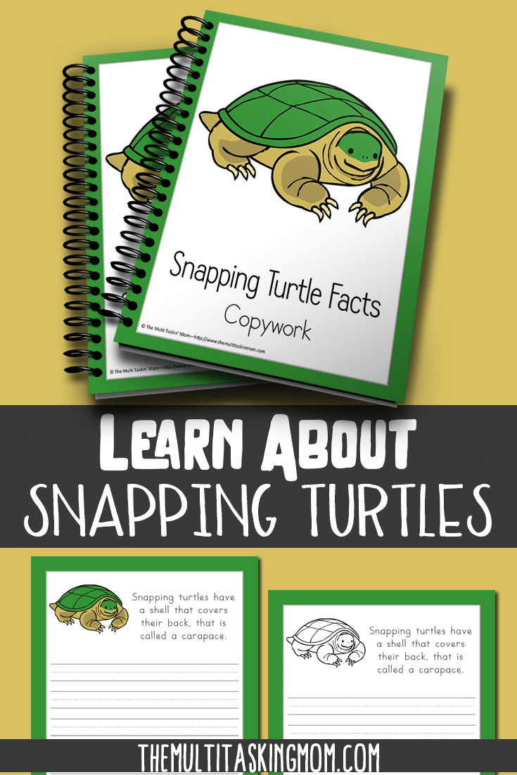 Snapping Turtle Facts Color and Copywork