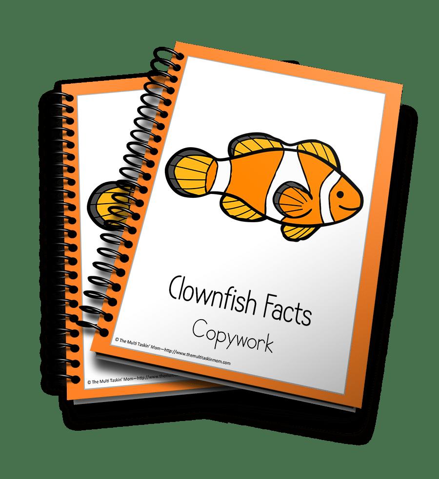 Clownfish Copywork 3D