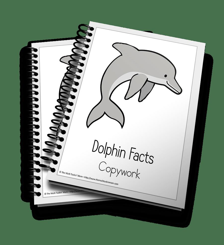 Dolphin Copywork 3D