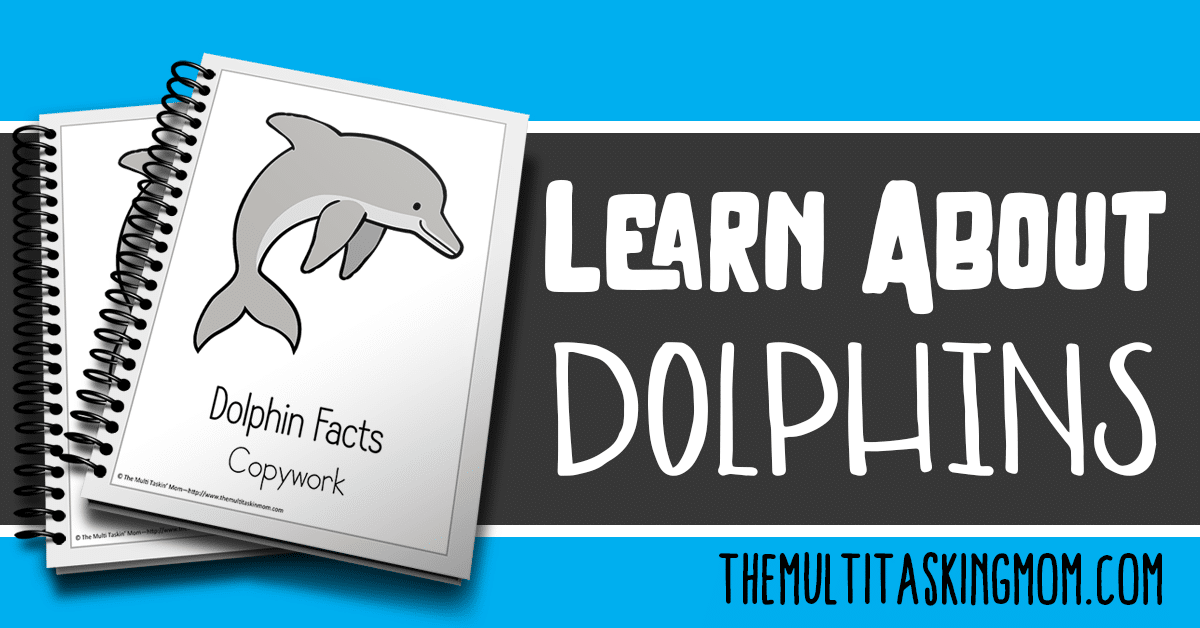 Dolphin Facts Color and Copywork