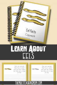 Your children will have so much fun learning about the fun eel. Grab this color and copywork pack today!