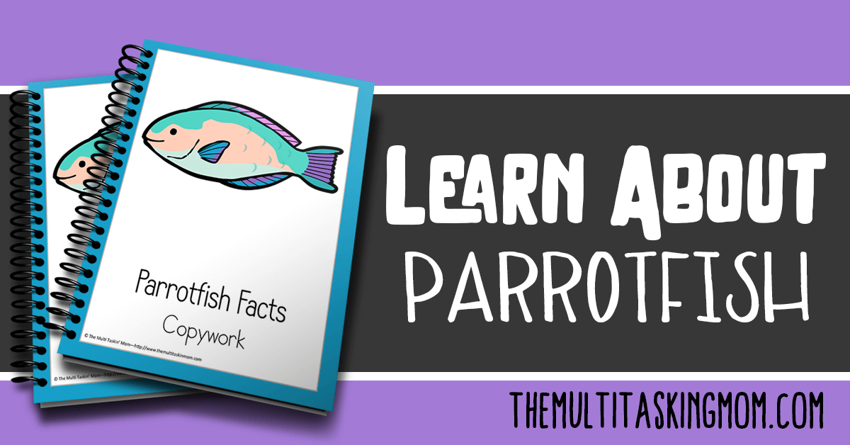 Parrotfish Facts Color and Copywork