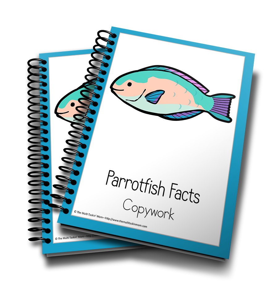 Parrotfish Color and Copywork