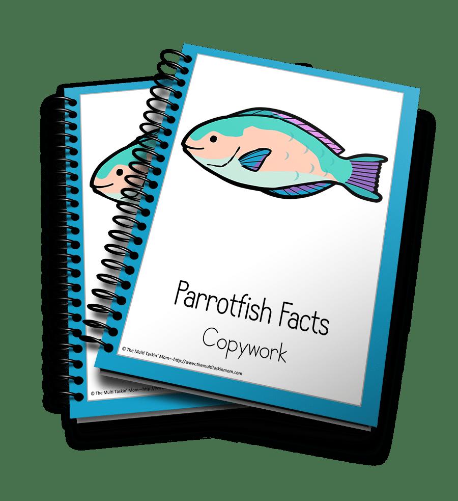 Parrotfish Copywork 3D