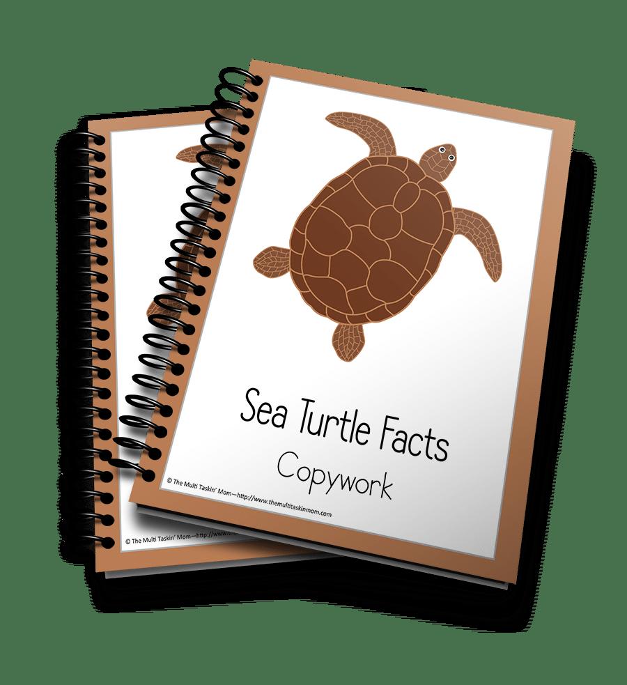 Sea Turtle Copywork 3D