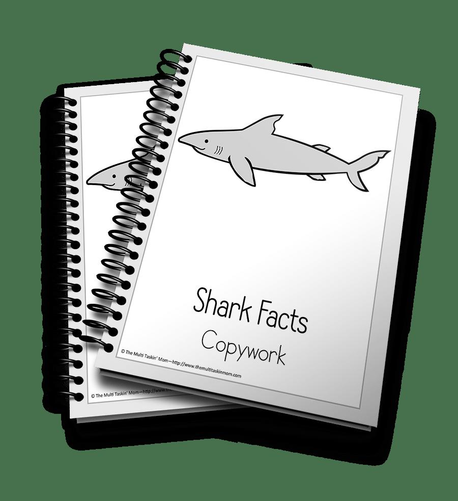 Shark Copywork 3D