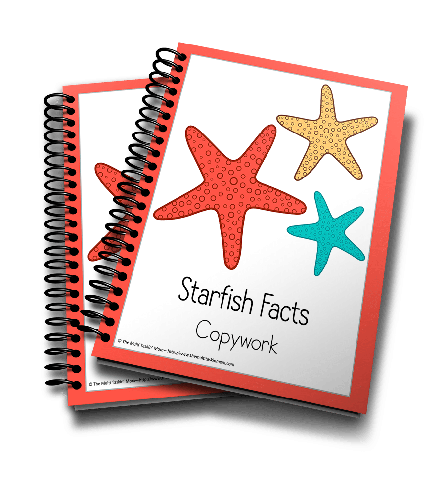 Starfish Copywork 3D