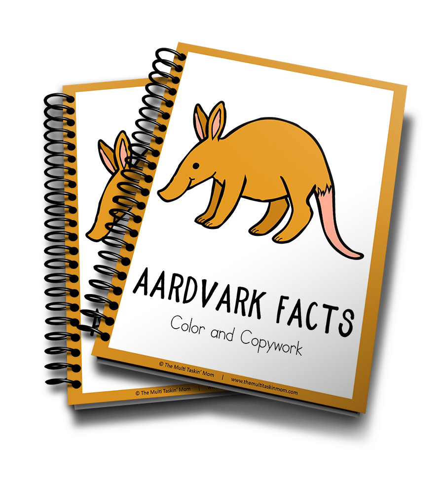 Aardvark Color and Copywork 3D