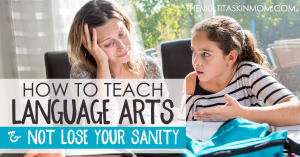 homeschool mom teaching language arts to child
